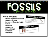 Fossils Word Wall | Fossils Vocabulary | Fossils Bulletin Board