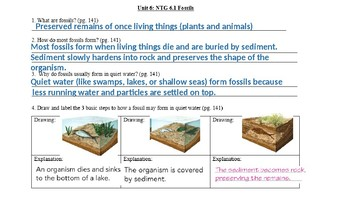 Fossils and Dating of Rocks Notes PPT Answer Key