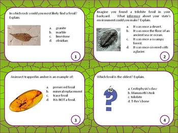 Dinosaurs and Fossils science: review and SAGE test preparation task cards