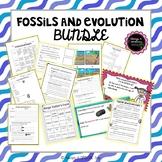 Fossils and Evolution Bundle