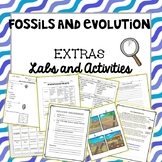 Fossils and Evolution: Labs and Activities