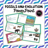 Fossils and Evolution PowerPoints