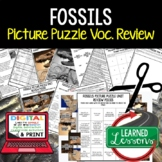 Fossils and Geological Timelines  Picture Puzzle Study Gui