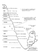 Fossils and Relative Dating Worksheet