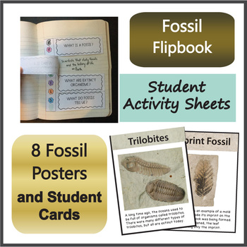 Fossils and Types of Fossils NGSS 3-LS4-1