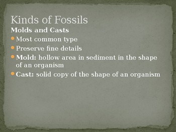 Fossils and the Geologic Time Scale
