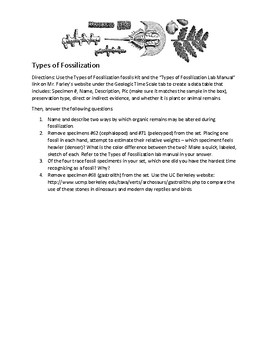 Fossils and the Rock Record (Geologic Time) - HS Earth - whole unit