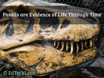 Fossils are Evidence of Life Through Time (PDF)
