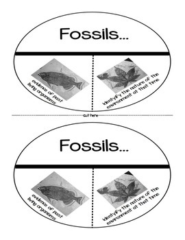 Fossils as Evidence