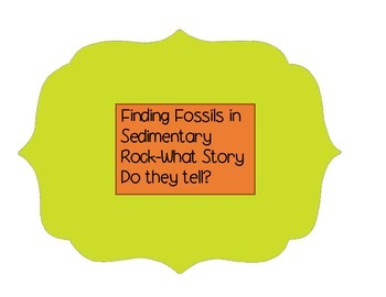Fossils found in Sedimentary Rock ISN Activity