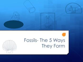 Fossils graphic organizer- The 5 Ways Fossils Form