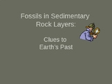 Fossils in Sedimentary Rock Layers
