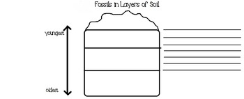 Fossils in Soil