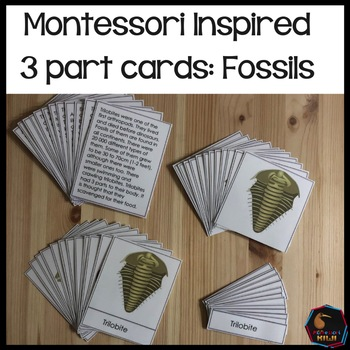Fossils of different eras 3 part cards