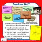 Fossils or Not?