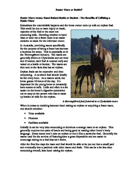 Foster Mare or Bottle Fact Sheet