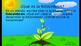 Fotosíntesis (Photosynthesis presentation in Spanish)