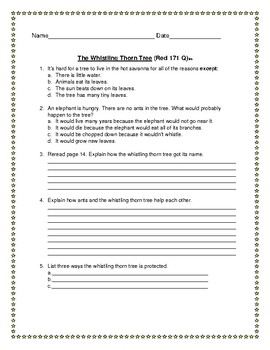 Leveled Literacy Intervention Red System Lessons 170-179