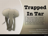 Fountas & Pinnell Shared Reading: Trapped in Tar
