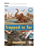 Trapped in Tar