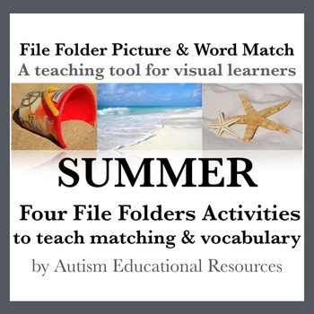 Summer File Folder Activities - Picture & Word Match