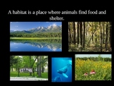 Four Kinds of Habitats