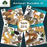Four Regions Animal Clip Art Bundle II