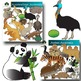 Four Regions Animal Clip Art Bundle II