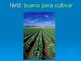 Four Regions of California/ Cuatro regiones de California Spanish Powerpoint