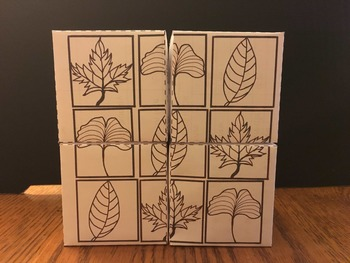 Four Season Cubes coloring pages (simple cutting and gluing required)