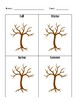 Four Seasons- Coloring the tree and information sheets