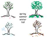 Four Seasons Tree Match