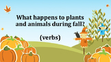 Four Seasons Vocabulary Learning Packet- Fall/Autumn