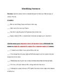 Four Types of Sentences Activity Worksheet