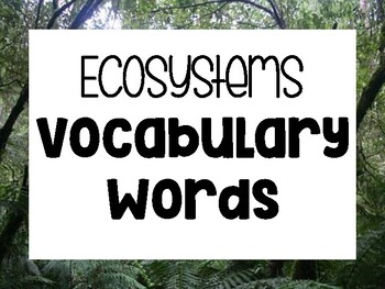 Fourth Grade Ecosystems Word Wall