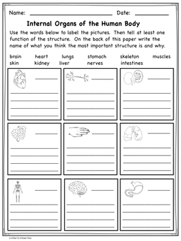 Fourth Grade NGSS 4-LS1:  Life Science Unit in Pdf and Digital Format