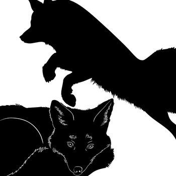 Fox ClipArt Silhouettes, Black Line Art Images, Realistic Fox Images, Graphics