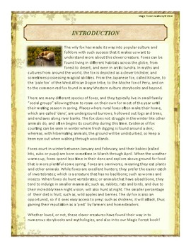 Fox Themed Nature Education Unit-Stage 2 (Magic Forest Academy)