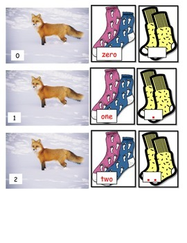 Fox wears Socks or Foot Feet math numbers matching words E