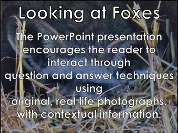 African Animals: Foxes - PDF presentation