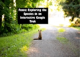 Foxes Around the World: Exploring the Fox Species Google Trek