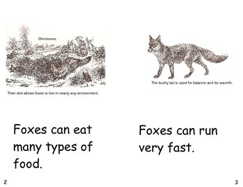 Foxes Can- a non-fiction guided reading book