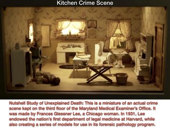 Frances Glessner Lee - Q & A for 3 Diorama Crime Scenes - FREE