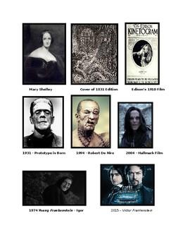 Frankenstein Novel Snapshot