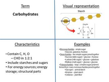 Frayer Models for Major Organic Compounds in Living Things
