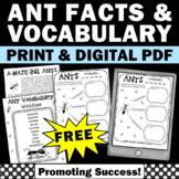 Free ANTS Spring Summer Science Vocabulary Worksheets 3rd 4th Grade Digital