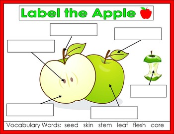 Free Apple Interactive Anchor Charts