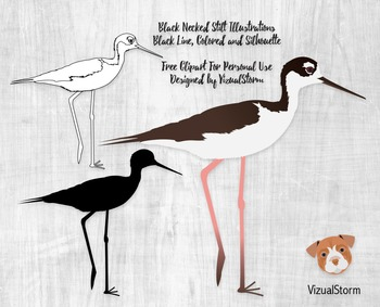 Free Bird Clipart - 3 Stilt Illustrations - Black Line, Colored and Silhouette