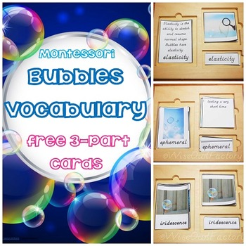 Free Bubbles Vocabulary 3-Part Montessori Cards