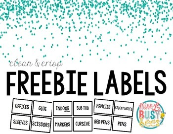 Free! Clean Crisp Labels to Organize Classroom